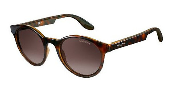 Carrera CARRERA 5029NS DWJ/S1 BROWN SFHAVANA