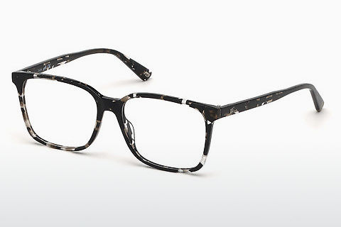 Gafas de diseño Web Eyewear WE5292 055