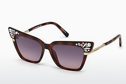Gafas de visión Dsquared DQ0293 53B - Havanna, Yellow, Blond, Brown