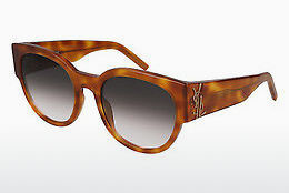 Gafas de visión Saint Laurent SL M19 003 - Marrones, Havanna