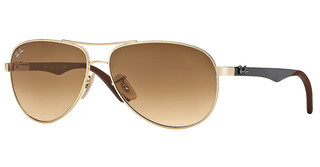 Ray-Ban RB8313 001/51 BROWN GRADIENTARISTA